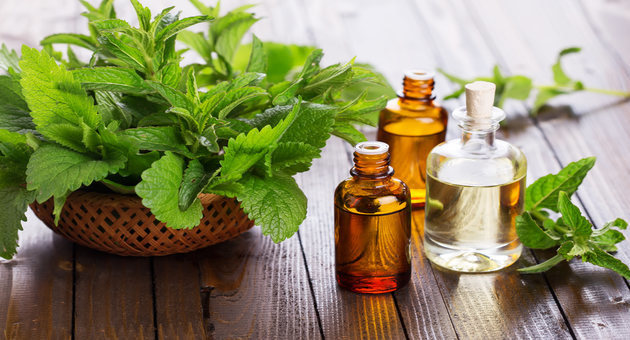 Here Is Why Peppermint Oil Is So Good For You