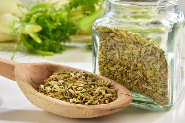 fennel seed or saunf for indigestion